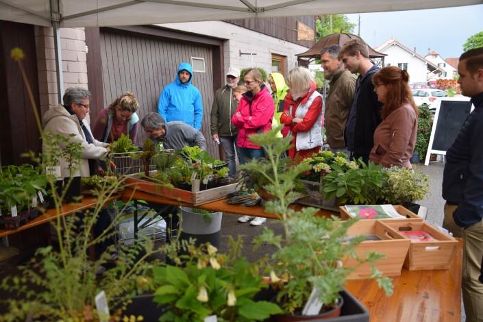 Das Foto zeiht die Teilnehmer ndes Impulse-Transfers bei der Moor-Nebel Gärtnerei GmbH in Hochwald/SO